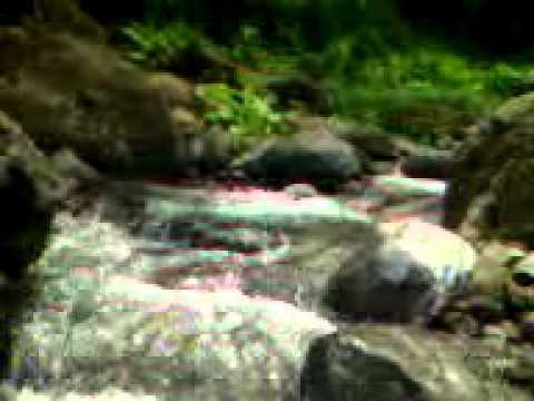 Video wisata bandung sari