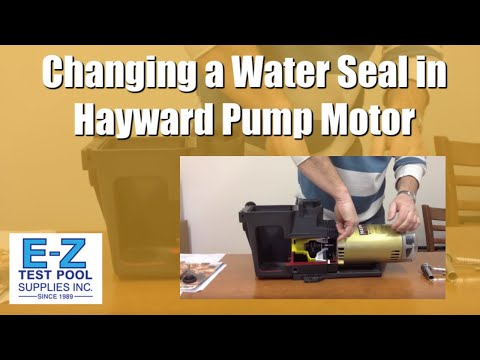 Hayward super pump seal replacement how to save money for Changing pool pump motor