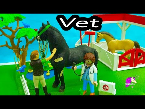Full Farm Vet version for Windows.