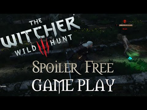The Witcher: Wild Hunt Jesse vs The Wraith