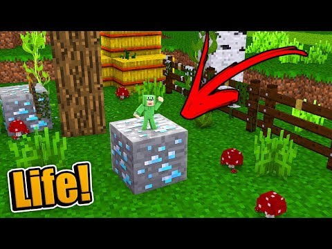 HOW TO LIVE INSIDE A DIAMOND BLOCK!