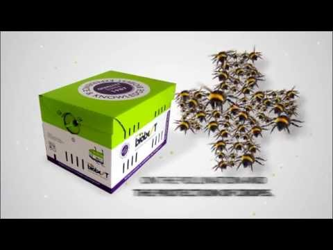 A new hive for Biobest bumblebees