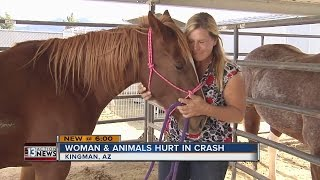 Woman survives Arizona crash with many animals she rescued