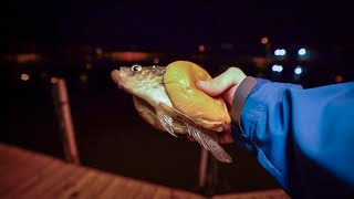Making a Crappie Sandwich - Catch n' Cook Black Crappie