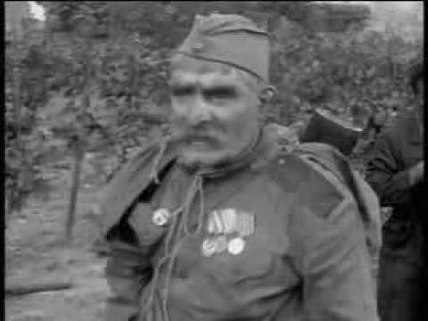 Отец солдата (любовь Грузина к винограду!))