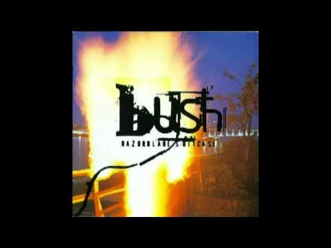 Bush - Tendancy to Start Fires