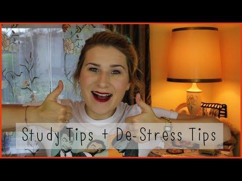 School 101 | Study Tips + De-Stress Tips for High School/University/College