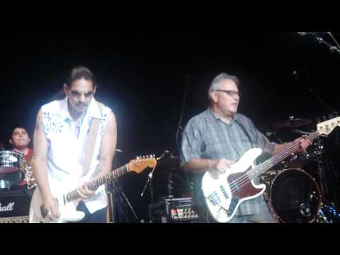 Don't Worry Baby - Los Lobos featuring Henry Garza