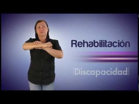 Módulo Discapacidad parte 1del Video Diccionario de Lengua de Señas Venezolana Tomo 3