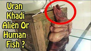Uran Khadi Alien Spotted   The Strange Creature OR Human Fish  