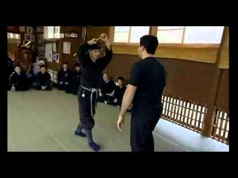 Hatsumi Bujinkan Dojo.