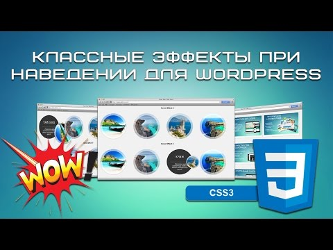 Классные эффекты при наведении для WordPress