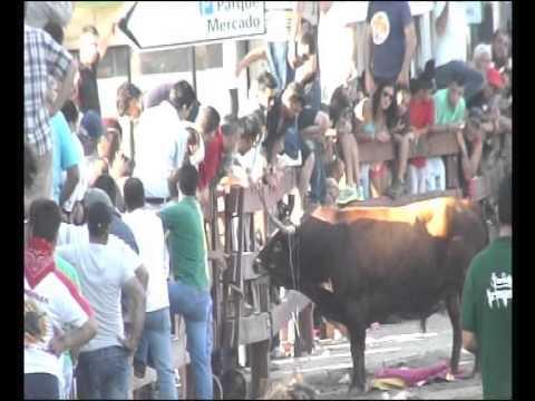 Espera de toiros Vila Franca de Xira dia 6 julho 2013