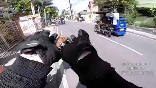 Байкеры на дорогах спасают животных