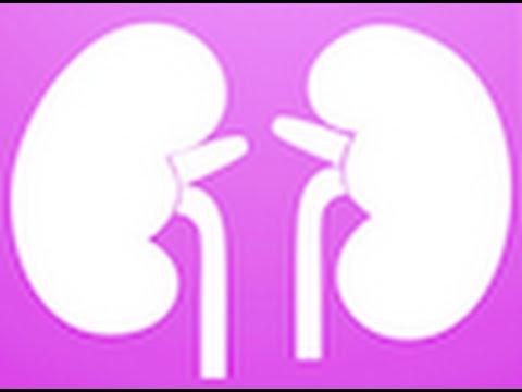 Trial # 7- Kidney Screening in SCD