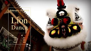 A Lion Dance Life: The Awaken Lion interprets the meaning of life