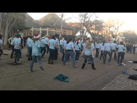 York County School of the Arts organized a flash mob on Monday, December 19 at Merchant's Square in Colonial Williamsburg.