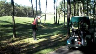 4-Iron Between the Trees