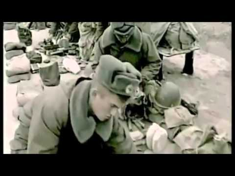 Красная плесень - Афганистан