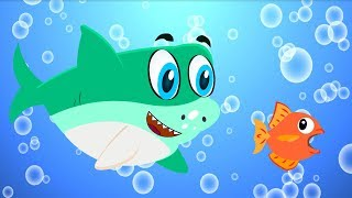 Baby Shark Song | Nursery Rhyme for Kids | #BabyShark by LittleRoyals