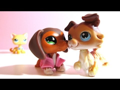 Littlest Pet Shop: Popular (Episode #21: What's Done is Done)