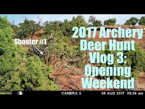 2017 Archery Deer Hunt Vlog 3: Opening Weekend