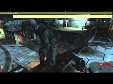 Tutorial: Console Commands for COD:WAW - PC