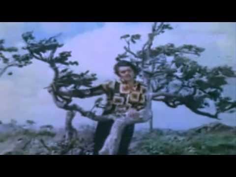O Hansini Meri Hansini   Kishore Kumar   ZEHREELA INSAAN 1974...
