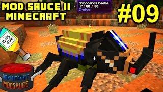 Minecraft Mods - Mod Sauce II Ep. 09 - Beetle Race & Real Life !!! ( HermitCraft Modded )