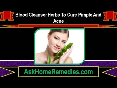 Blood Cleanser Herbs To Cure Pimple And Acne