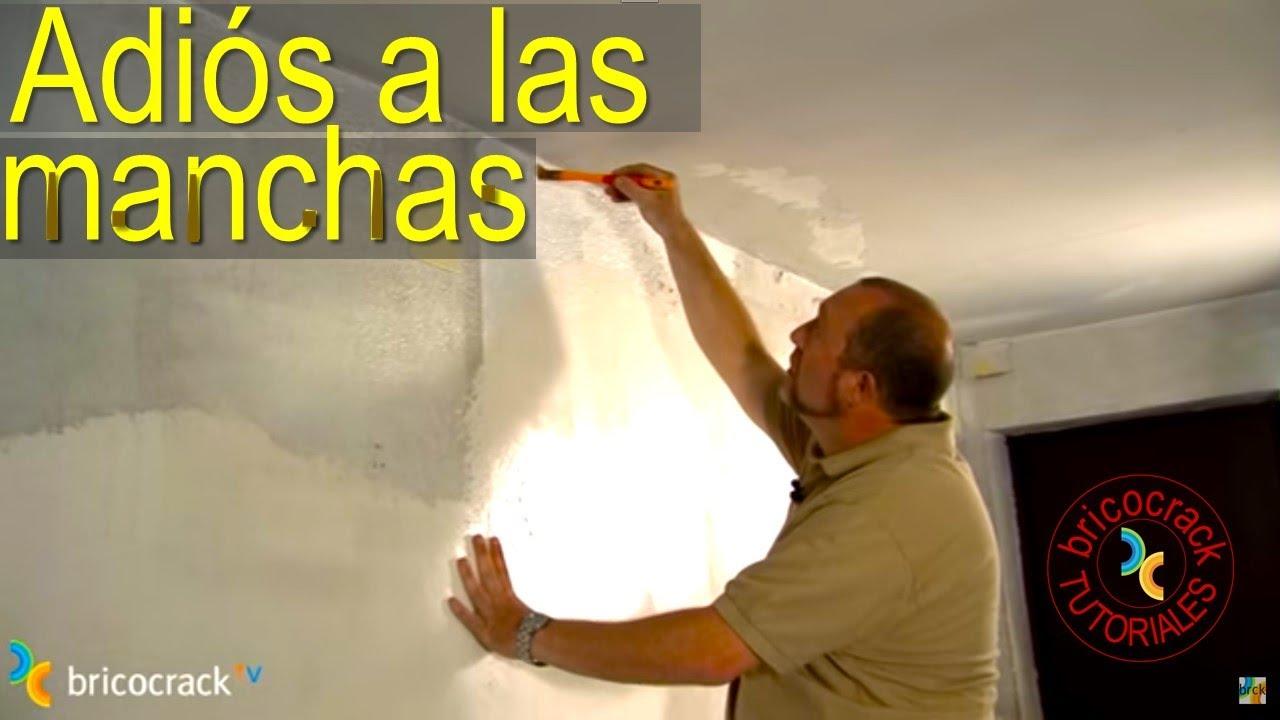 Tapar manchas y pintar en ambientes h medos bricocracktv for Como tapar la humedad de la pared