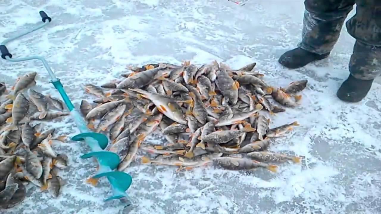Рыбалка в Костроме