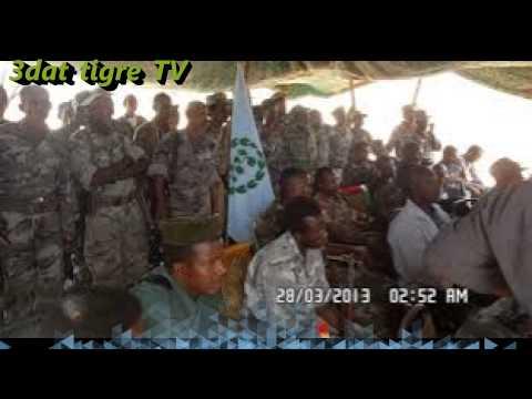 Eritrea Tigre Music Fala Lhyes By Saeed Abdullah فاله لحيس لدينا اب سعيد عبد الله video