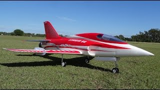 World's Fastest 6S Freewing Stinger 90 EDF JET @ 252km/h | RC Skunk Works ADP