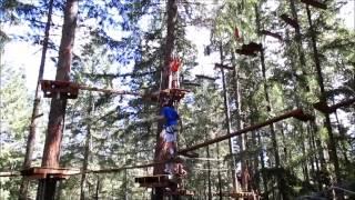 Fabulous Fun, At Tree to Tree, Part 2 - jennings644