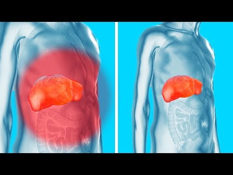 Remove Toxins from Your Kidneys, Liver and Bladder Gently Yet Effectively