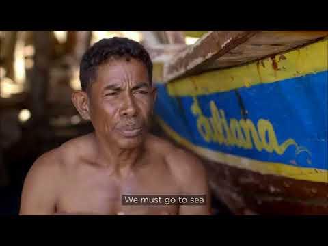 Budaya Pemancingan Paus di Lamalera Flores NTT