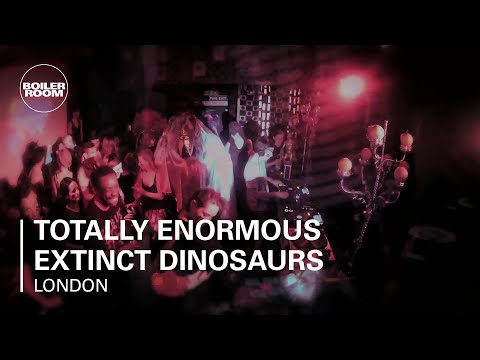 Totally Enormous Extinct Dinosaurs Boiler Room DJ Set
