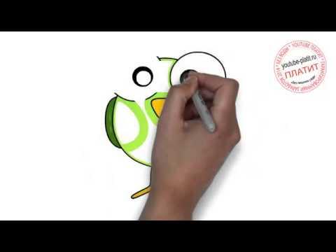 Видео как нарисовать птицу детям поэтапно