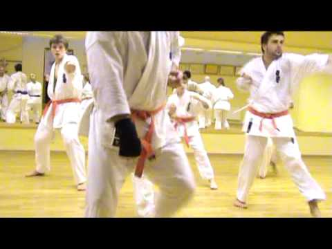Kyokushin Karate Training, Hanshi Istvn Admy 07.02.2009 Image 1