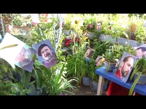 SIXTINA LUI MURIVALE - INSERŢII PORTRETE PICTORI - VIDEO III