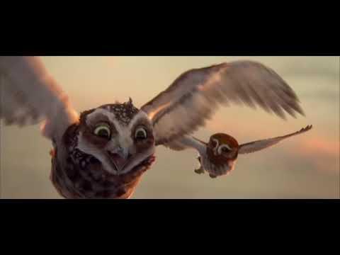 Le Royaume de Ga'Hoole - la légende des gardiens - Bande-Annonce VF [HD]