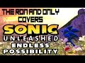 Endless Possibility - Bowling for Soup (Sonic Unleashed) Acoustic Cover