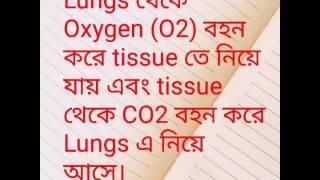 Blood function bangla full.