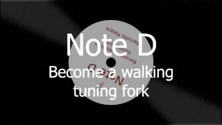 10 min of D. Perfect Pitch: Become a walking tuning fork. Imprint D in you.