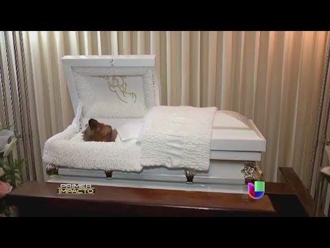 Imágenes de un funeral insólito para un perro han dado la vuelta al mundo