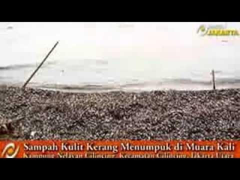JOKOWI Beberkan Joroknya Warga Jakarta JOKOWI Bagaimana Banjir Bisa Hilang