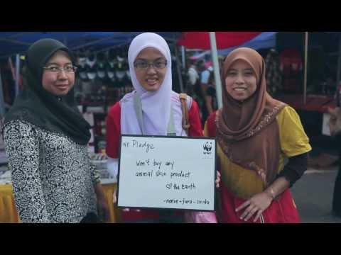 WWF-Malaysia rocks World Wildlife Day at Gaya Street Kota Kinabalu, Sabah