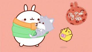 Molang & PiuPiu - Cute Pets | #MyBestPets - Cartoon for kids