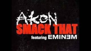 akon et eminem - smack that.wmv